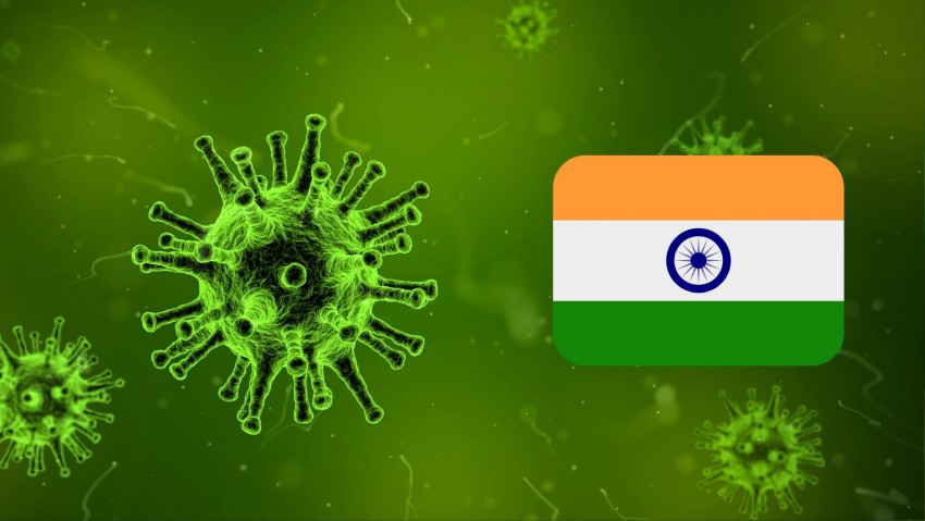 Coronavirus: Where India Stands on Testing of Coro