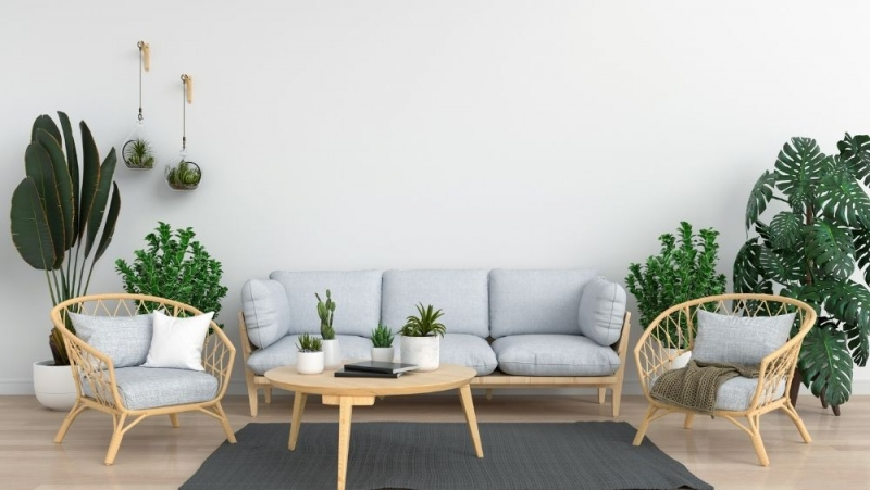 Evergreen Interior Decoration Ideas that are Always in Style